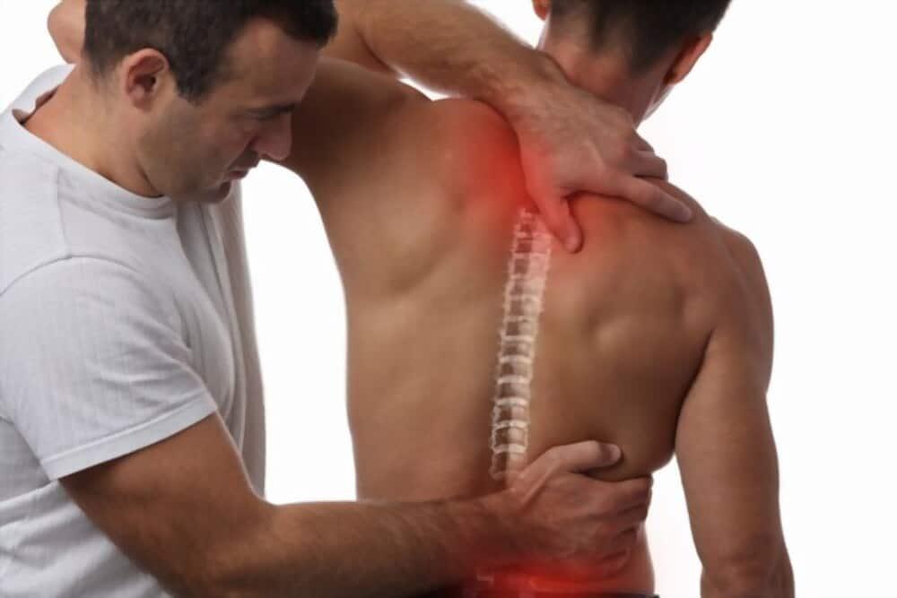 Snailax Shiatsu Neck And Back Massager