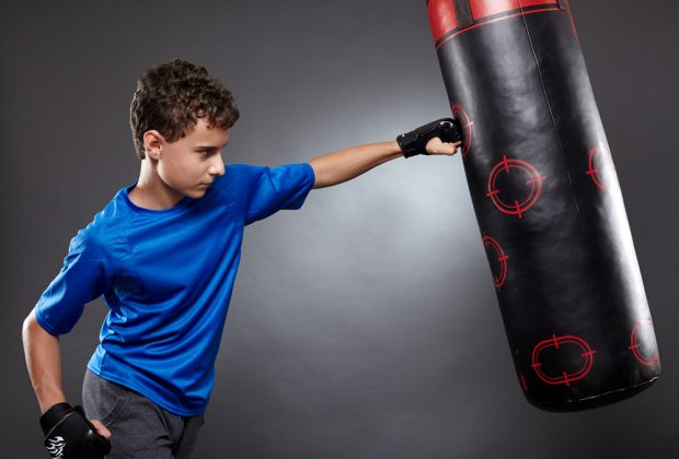 Aqua Punching Bag Review